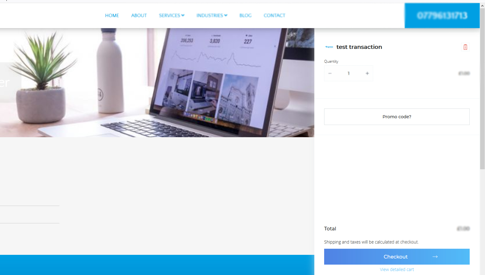 Selling your services and products online
